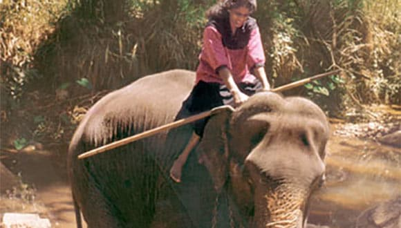 Woman riding elephant