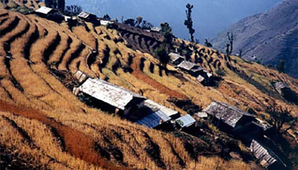 Terraces in Nepali