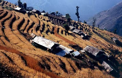 Photo of terraced hill in Nepal